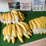 館山、佐藤バナナ問屋