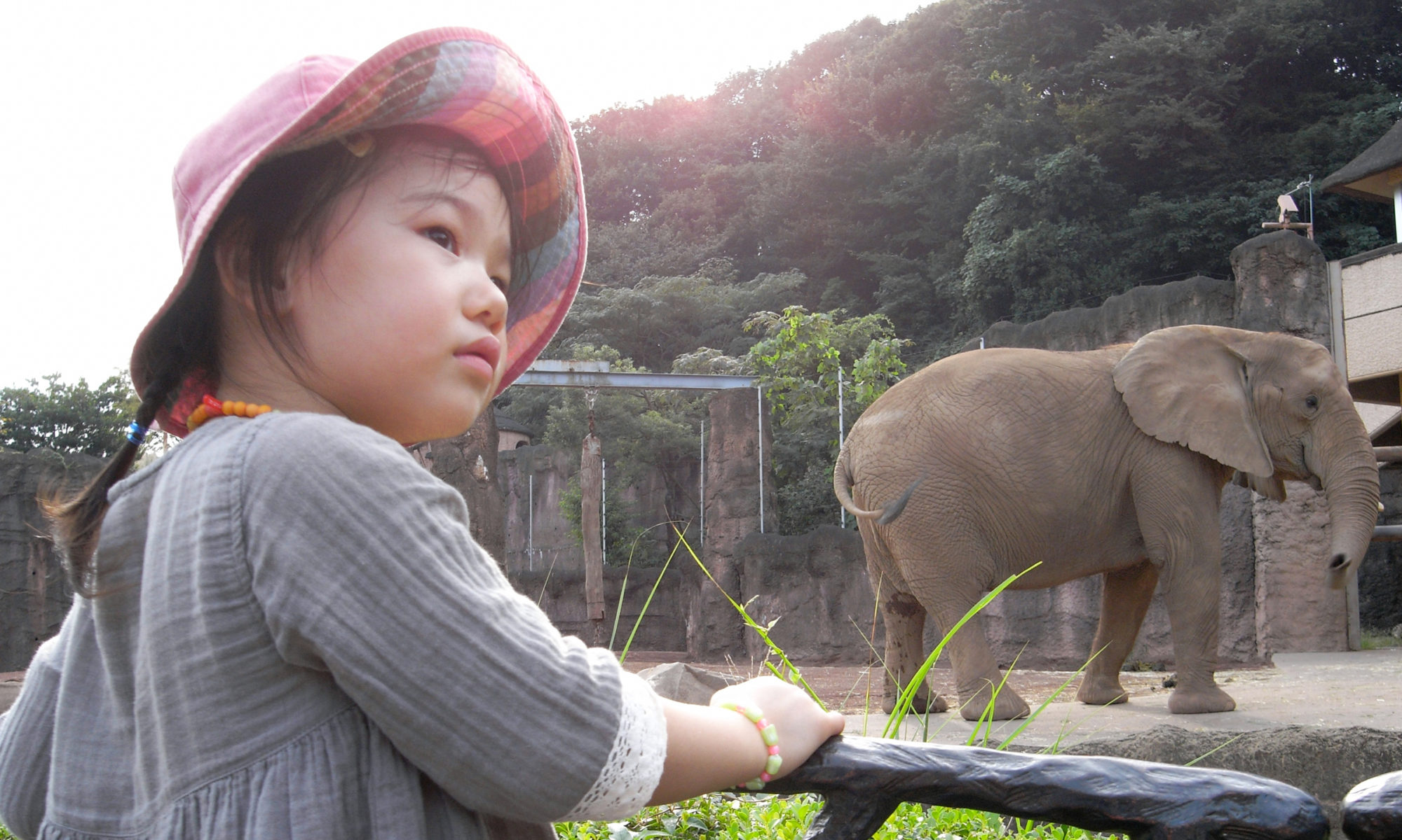 Toru Kouyama Website
